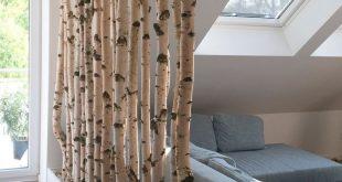 Birkenstämme als Raumteiler
